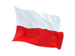 Poland Virtual Phone Number
