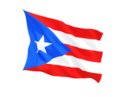 Puerto Rico Virtual Phone Number