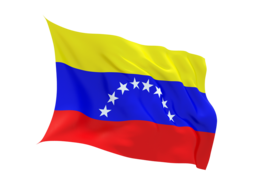 Venezuela Virtual Phone Number